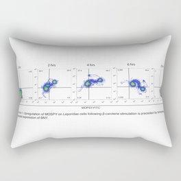 Figure 1: MOPSY Rectangular Pillow