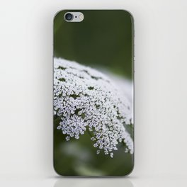 Queen Anne's Lace iPhone Skin