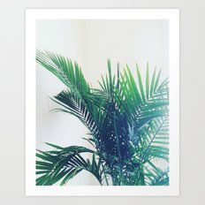 The Palm Art Print