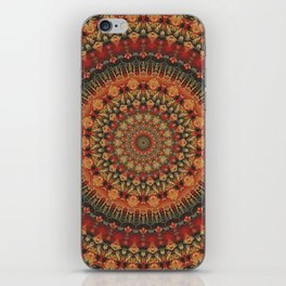 Mandala 563 iPhone Skin