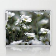 Snow In Summer Laptop & iPad Skin