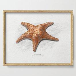 Leather star (seastar / starfish)  art print Serving Tray