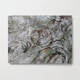 driftwood at Tahsis Metal Print