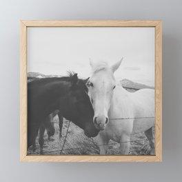 Horse Pair Framed Mini Art Print