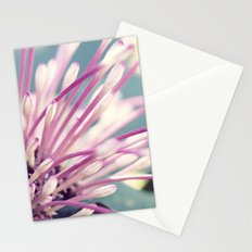 Delicates Stationery Cards