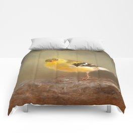 Winter Goldfinch Comforters