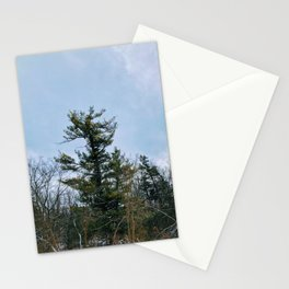 Lonely tree in the forest Stationery Cards