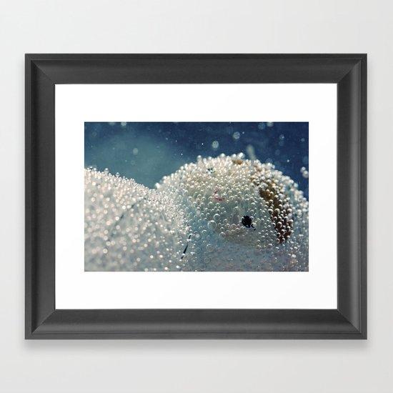 Polar freeze Framed Art Print