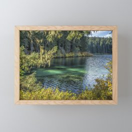 Emerald Tones of Clear Lake Framed Mini Art Print