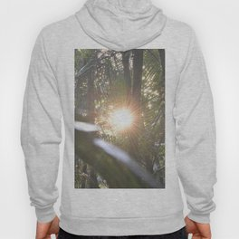 Sunset in the cloud forest  - near Tradewinds Trail - El Yunque rainforest PR Hoody