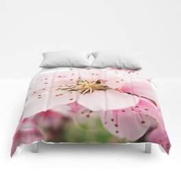 Pink Plum Blossoms Comforters