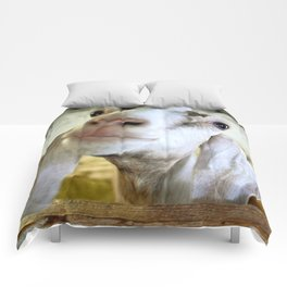 Goat Gone Wrong Comforters