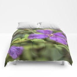purple Clematis flower Comforters