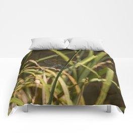 Dragonfly in the marsh Comforters