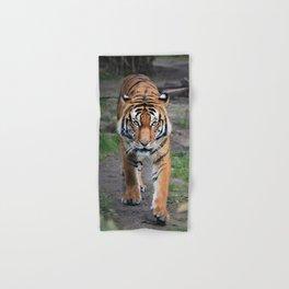 The Bengal Tiger Hand & Bath Towel