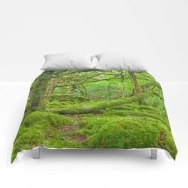 Emerald Forest Comforters