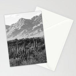 Wild West III - Tucson - Black & White version Stationery Cards