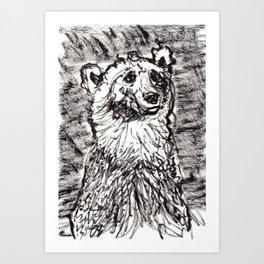 Quizzical bear Art Print