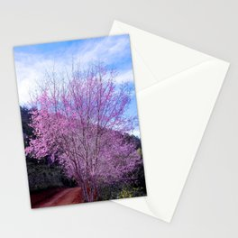 Peach blossom, Peach flower, Photo flower, Peach blossom hill Stationery Cards