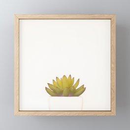 Cactus in flower pot on white background Framed Mini Art Print