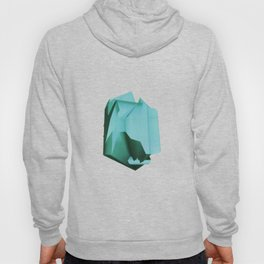 3D turquoise flying object  Hoody