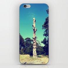 Trunk iPhone & iPod Skin