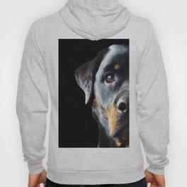 Rottie Love - Rottweiler Art By Sharon Cummings Hoody