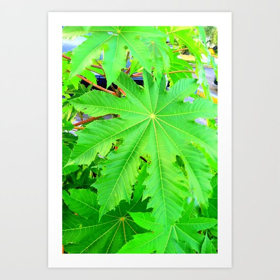 Green sleeves Art Print