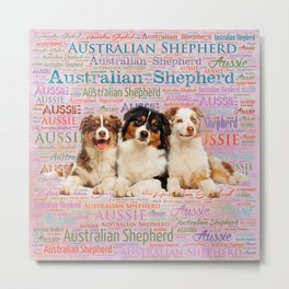 Australian Shepherd dogs  on Word Cloud 2 Metal Print