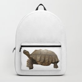 Sulcata Tortoise (side view) Backpack