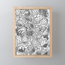 King and Queen Protea Framed Mini Art Print