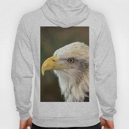 Columbia - Bald Eagle Hoody
