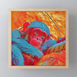 Popular Animals - Baby Chimp Framed Mini Art Print
