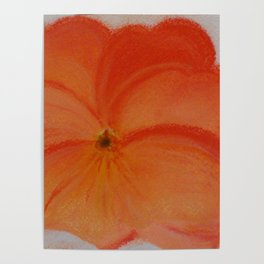 pansy flower Poster