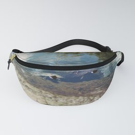 Two Turtles Fanny Pack