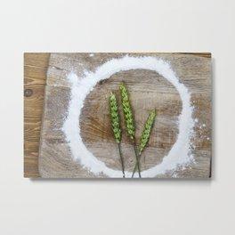 three green wheat Metal Print