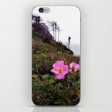 Pink Wild Rose, Gravels Park, Newfoundland iPhone & iPod Skin