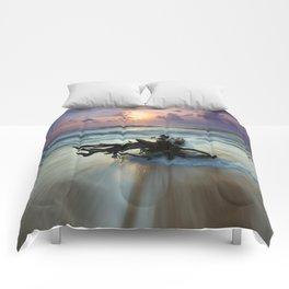 Driftwood Comforters