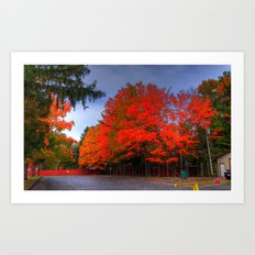 Falling for Red Art Print