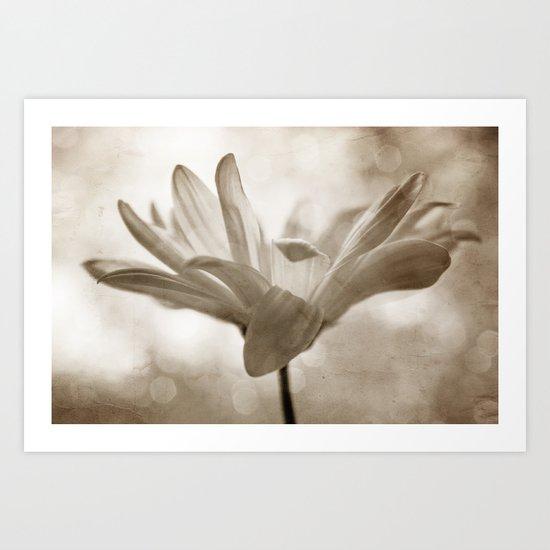 Delicate Dance Art Print