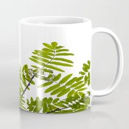 Green Rowan Leaves White Background #decor #society6 #buyart Coffee Mug