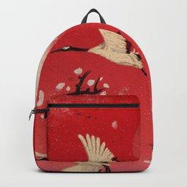 Durumi Backpack