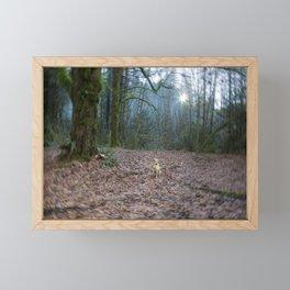 The World She Lives In Framed Mini Art Print