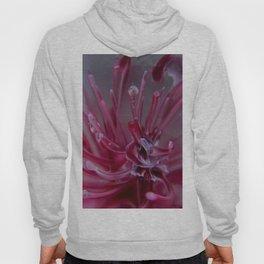 Frozen Sea Urchin Hoody