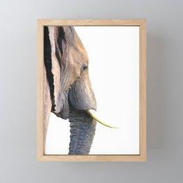 Elephant portrait Framed Mini Art Print