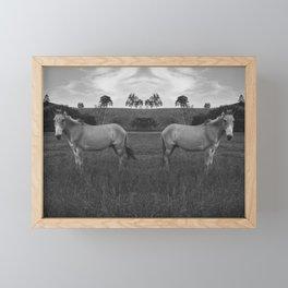 Donkeys Framed Mini Art Print