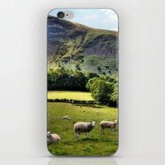 Lucky Sheep iPhone & iPod Skin