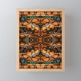 Rainbow Boa Framed Mini Art Print