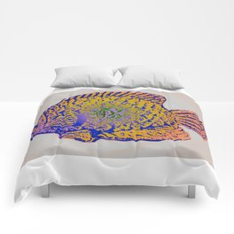 Sunfish Colors 2 Comforters