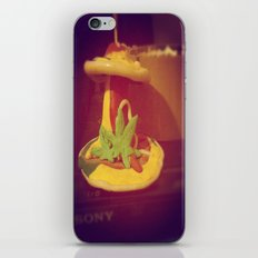 My Lovely Earth Jam  iPhone & iPod Skin